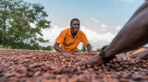 Swiss cocoa industry commits to sustainable cocoa
